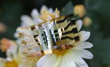 柔性太阳能电池可以为您的智能手表供电